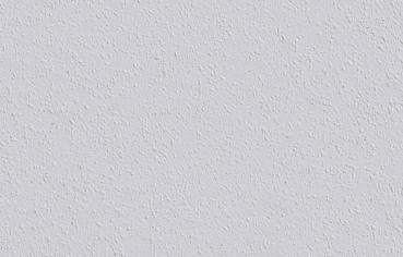farbenhaus schupp erfurter rauhfaser nr 20 feinkorn. Black Bedroom Furniture Sets. Home Design Ideas